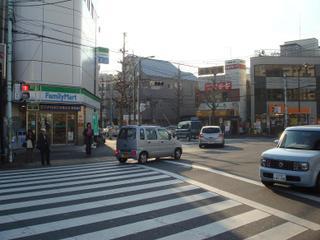 Okushiba_root1
