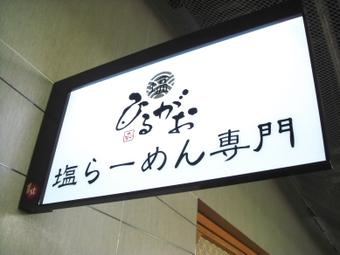 Hirugao_tokyo003