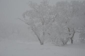 2010_skiakki0003
