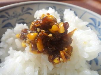 20101214_curry_rayu_0001