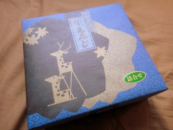 20111128_namamomiji_0004